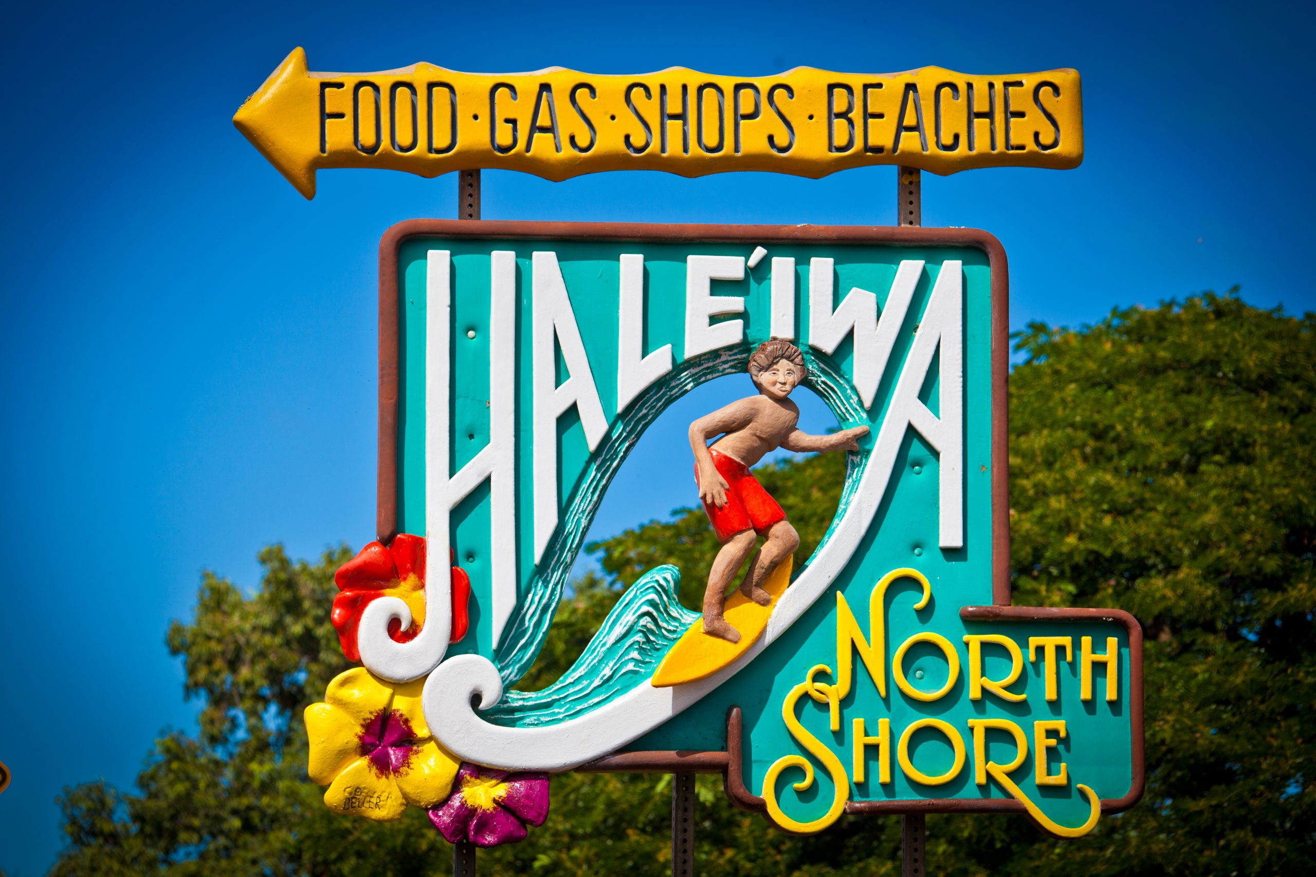 North Shore (Haleiwa) Tour