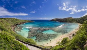 Private Oahu Limo Tours